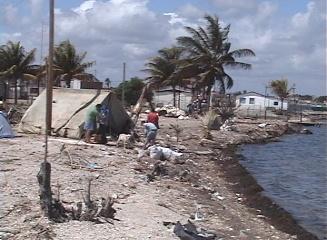 Favorables resultados del Proyecto Sabana- Camagüey en el centro de Cuba